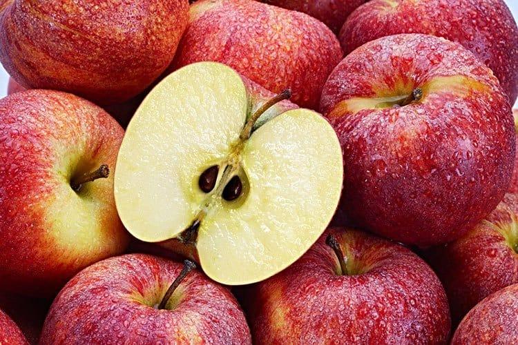 apple seeds tinpaw