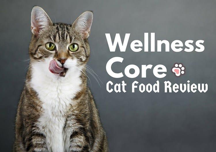 Is Wellness Core A Good Cat Food