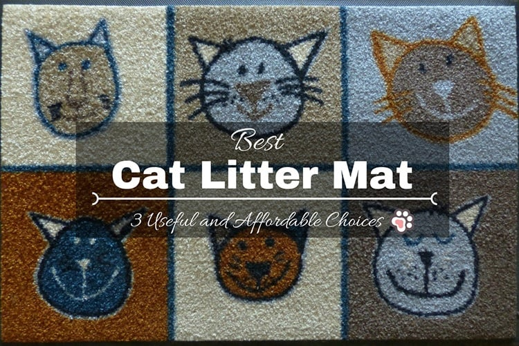 Best Cat Litter Mat: 3 Useful and Affordable Choices