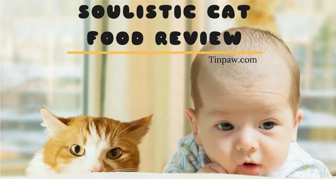 Soulistic Cat Food Review: Interesting Details You Need to Know