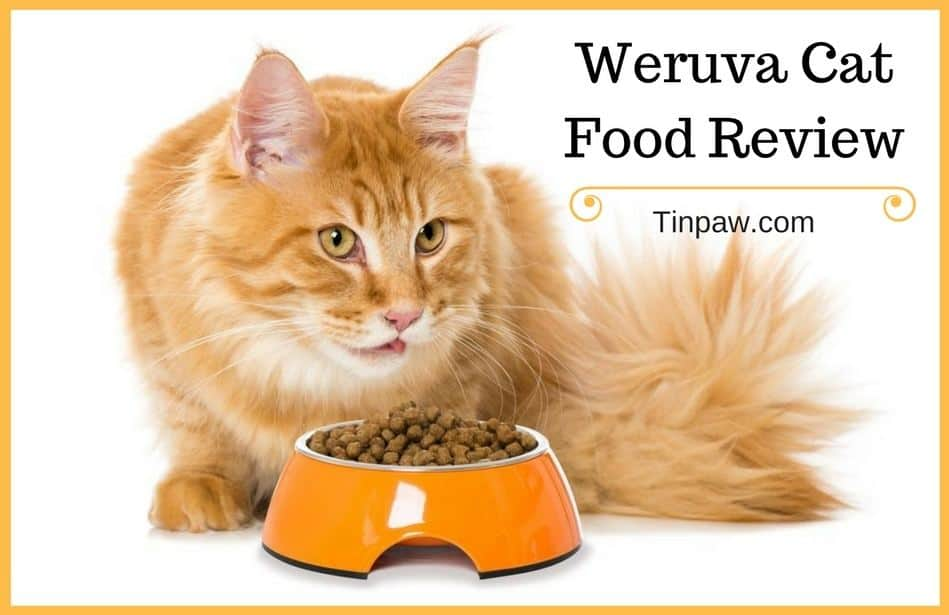 Weruva Cat Food Review: Pros, Cons, and Everything You Need to Know